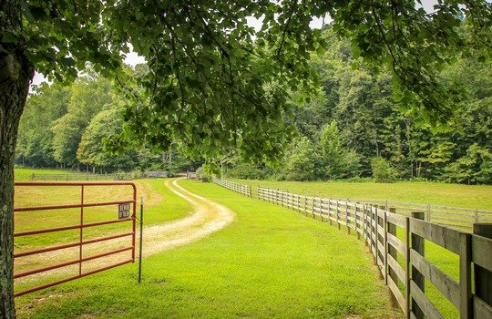 Horse-Property-For-Sale-Kentucky-Magnolia-100
