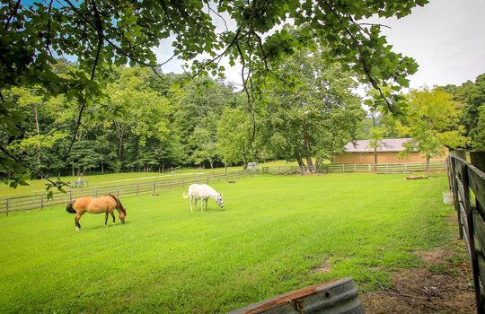 Horse-Property-For-Sale-Kentucky-Magnolia-102