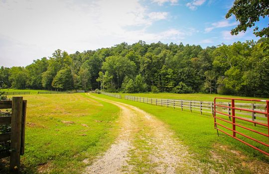 Horse-Property-For-Sale-Kentucky-Magnolia-225