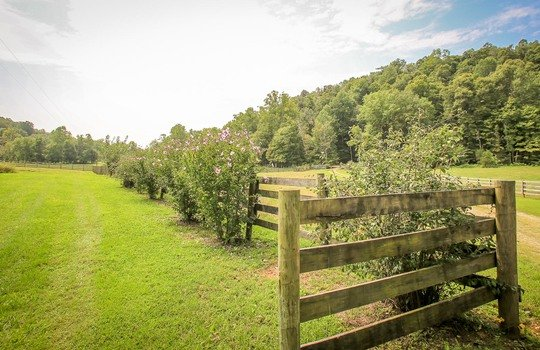 Horse-Property-For-Sale-Kentucky-Magnolia-230