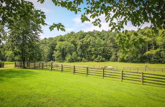 Horse-Property-For-Sale-Kentucky-Magnolia-235