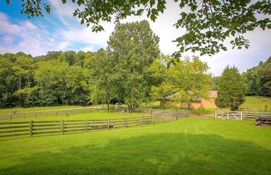 Horse-Property-For-Sale-Kentucky-Magnolia-237
