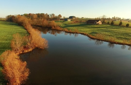 Kentucky-Horse-Property-Webster-