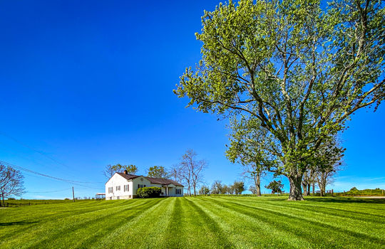 Small-House-Big-Land-for-sale-Kentucky-100