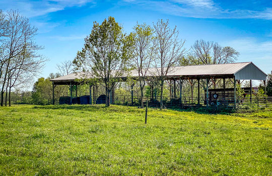 Small-House-Big-Land-for-sale-Kentucky-195