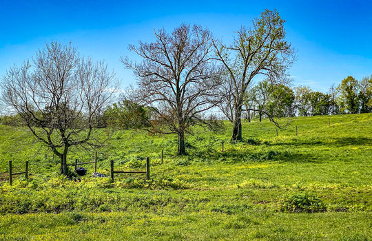 Small-House-Big-Land-for-sale-Kentucky-200