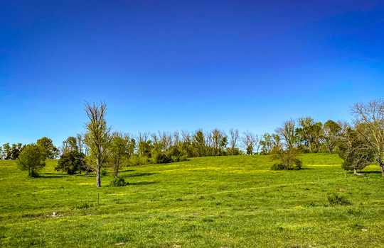 Small-House-Big-Land-for-sale-Kentucky-205