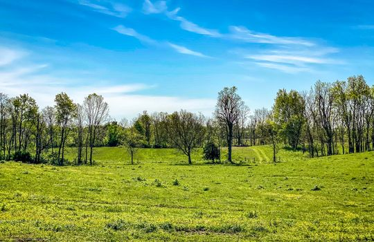 Small-House-Big-Land-for-sale-Kentucky-210