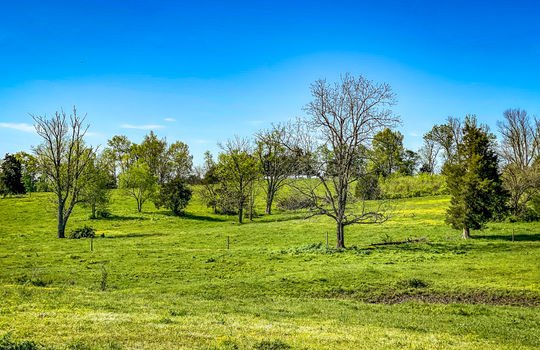 Small-House-Big-Land-for-sale-Kentucky-250