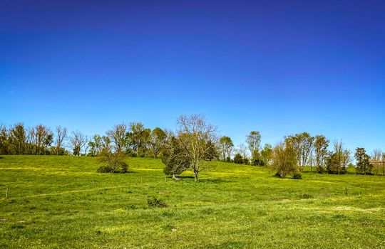 Small-House-Big-Land-for-sale-Kentucky-255