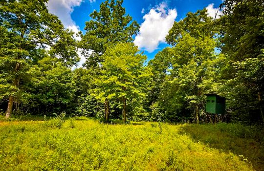 Property-for-sale-Kentucky-Mountains-035
