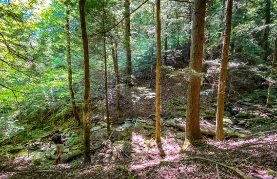 Property-for-sale-Kentucky-Mountains-050