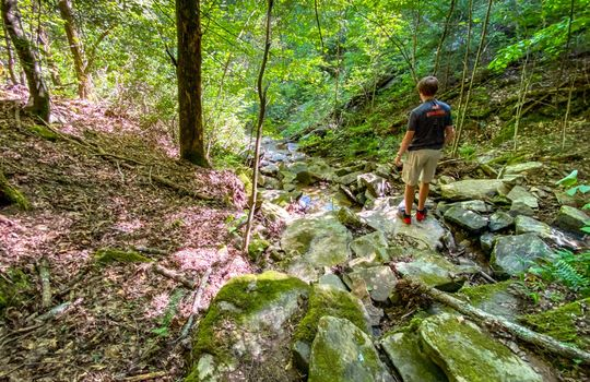 Property-for-sale-Kentucky-Mountains-053