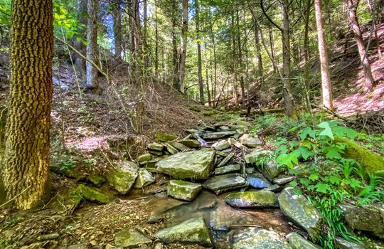Property-for-sale-Kentucky-Mountains-054