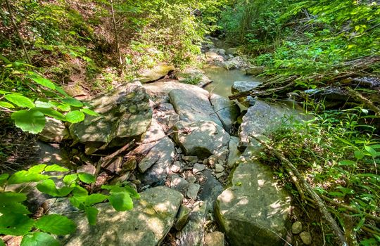 Property-for-sale-Kentucky-Mountains-055