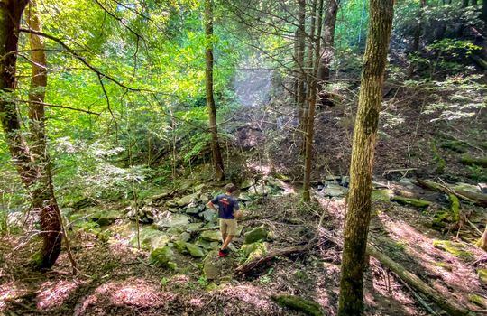 Property-for-sale-Kentucky-Mountains-056