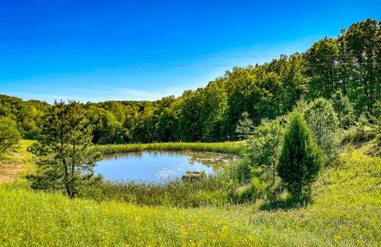 Property-for-sale-Kentucky-Mountains-064