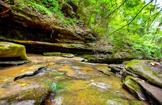 Property-for-sale-Kentucky-Mountains-068