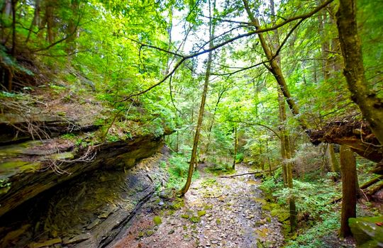 Property-for-sale-Kentucky-Mountains-076