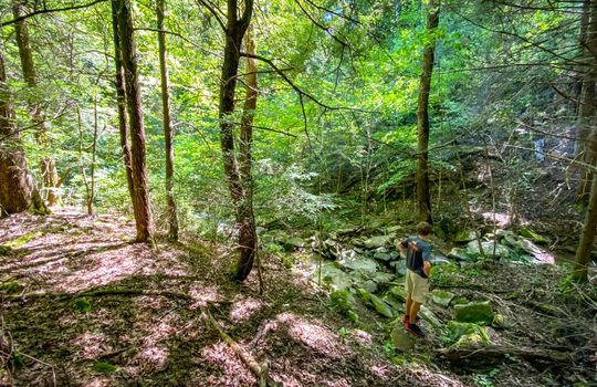 Property-for-sale-Kentucky-Mountains-092