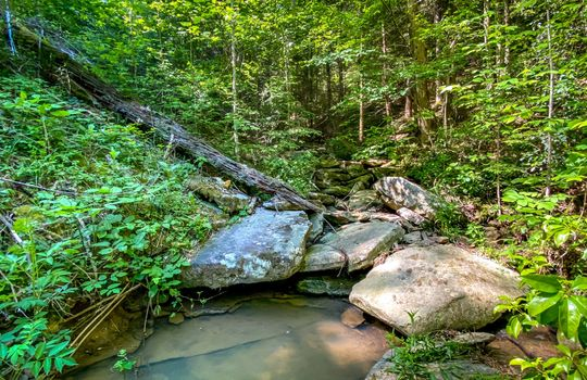 Property-for-sale-Kentucky-Mountains-094