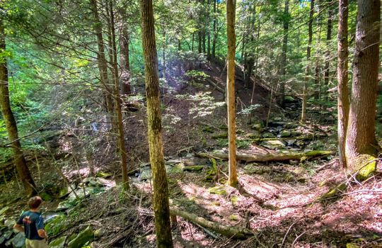 Property-for-sale-Kentucky-Mountains-140