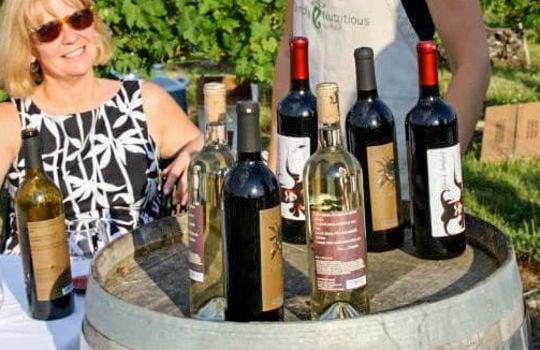 Horseshoe-Bend-Vineyard-Winery-06