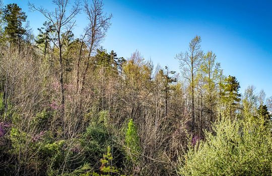 Mountain Property Cheap Land for Sale-0010