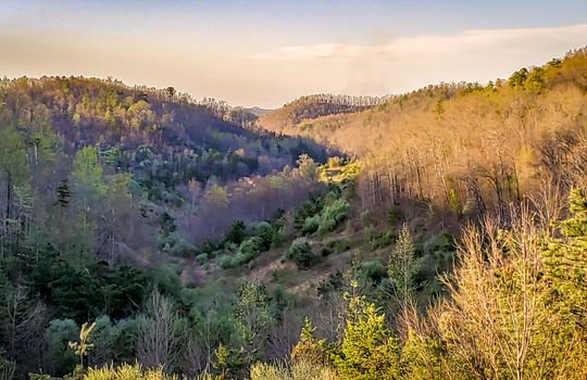 Mountain Property Cheap Land for Sale-003