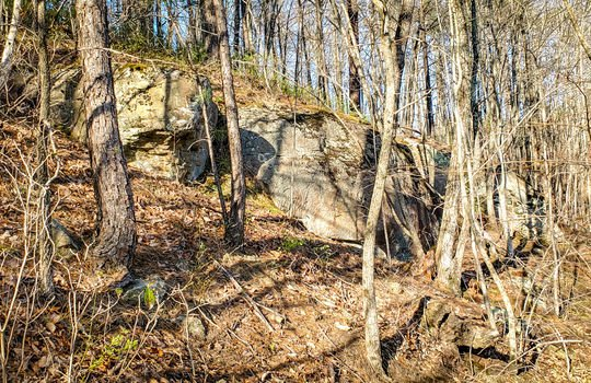 Mountain Property Cheap Land for Sale-004