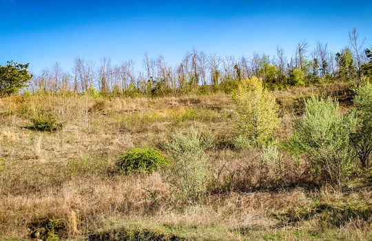Mountain Property Cheap Land for Sale-007