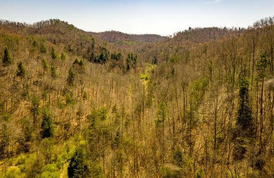 Mountain Property Cheap Land for Sale-008