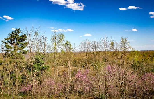 Mountain Property Cheap Land for Sale-009