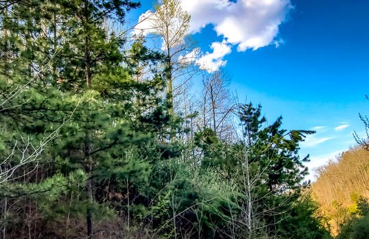 Mountain Property Cheap Land for Sale-012