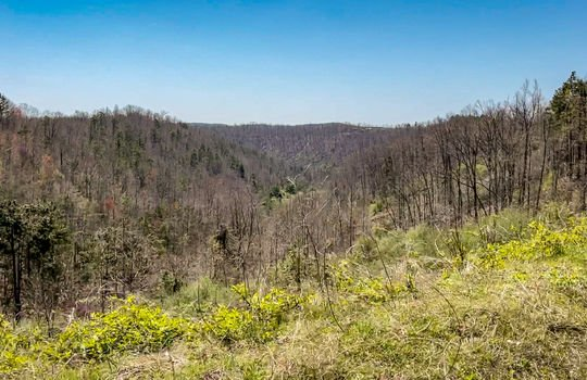 Mountain Property Cheap Land for Sale-012a