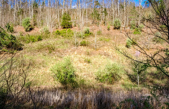 Mountain Property Cheap Land for Sale-016
