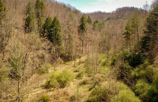 Mountain Property Cheap Land for Sale-018a