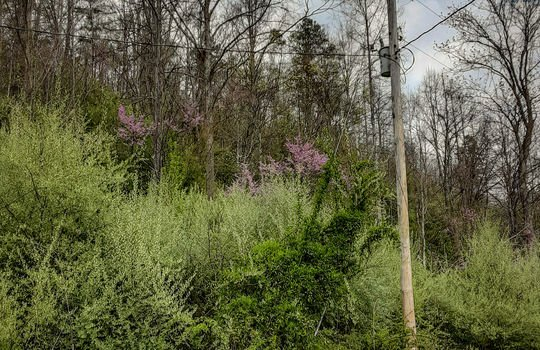 Mountain Property Cheap Land for Sale-022