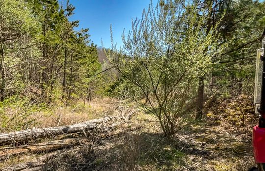 Mountain Property Cheap Land for Sale-024a