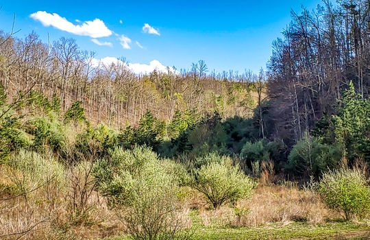 Mountain Property Cheap Land for Sale-026