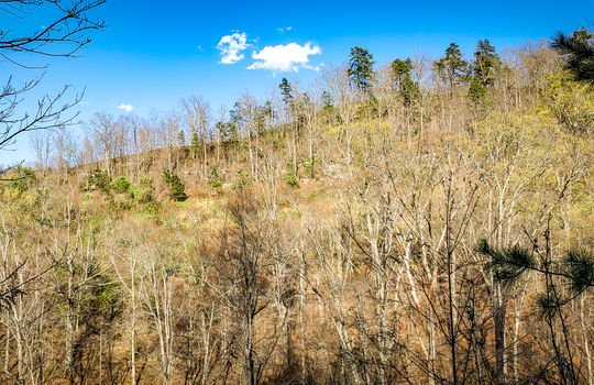 Mountain Property Cheap Land for Sale-028