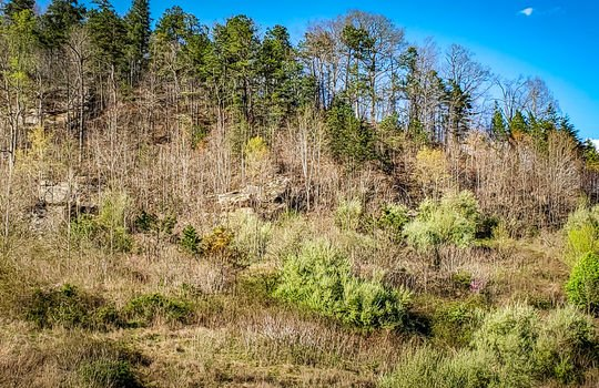 Mountain Property Cheap Land for Sale-034