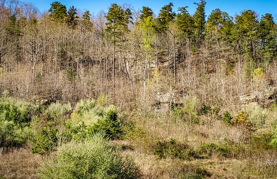 Mountain Property Cheap Land for Sale-036