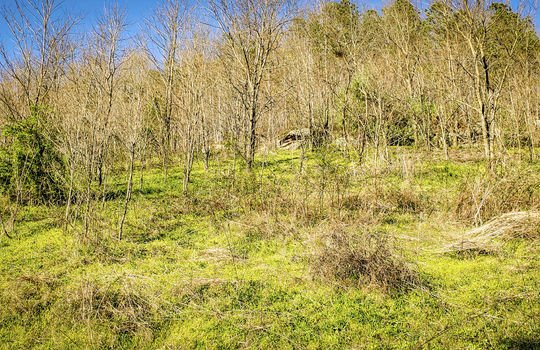 Mountain Property Cheap Land for Sale-042