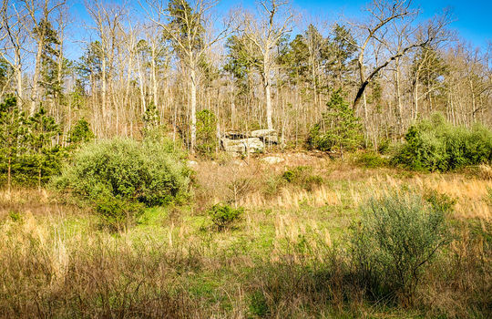Mountain Property Cheap Land for Sale-054