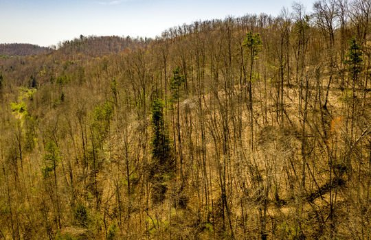Mountain Property Cheap Land for Sale-060