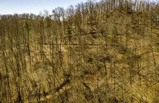 Mountain Property Cheap Land for Sale-062