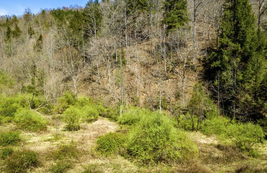 Mountain Property Cheap Land for Sale-070