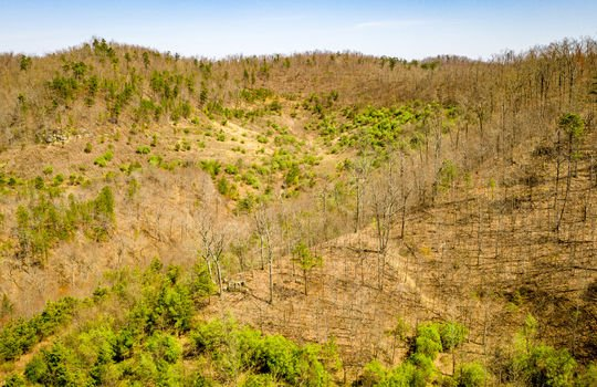 Mountain Property Cheap Land for Sale-076