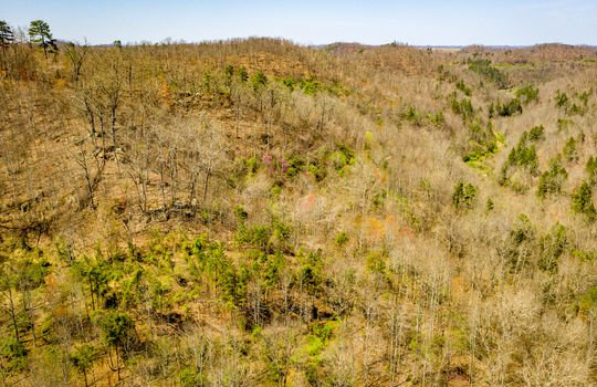 Mountain Property Cheap Land for Sale-082